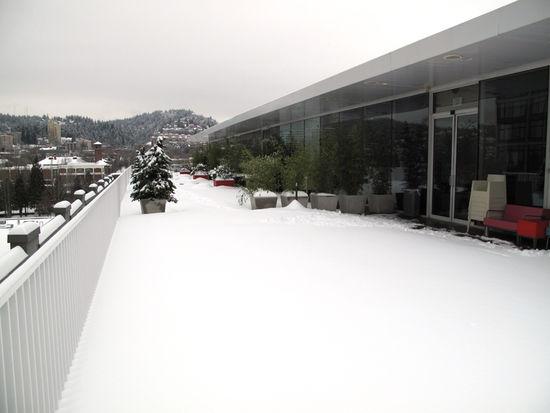 Snowy_WK